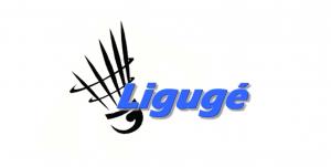 ligugéenne badminton